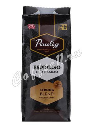 Кофе Paulig Espresso Fortissimo молотый 250 гр