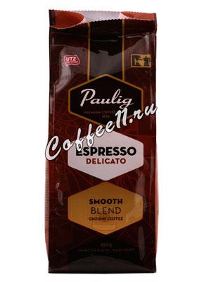 Кофе Paulig молотый Delicato молотый 250 гр